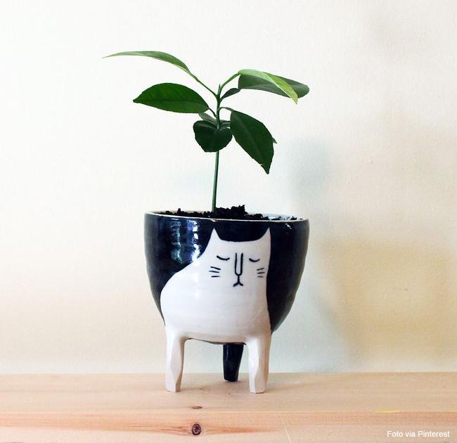 13 vaso decorativo gato